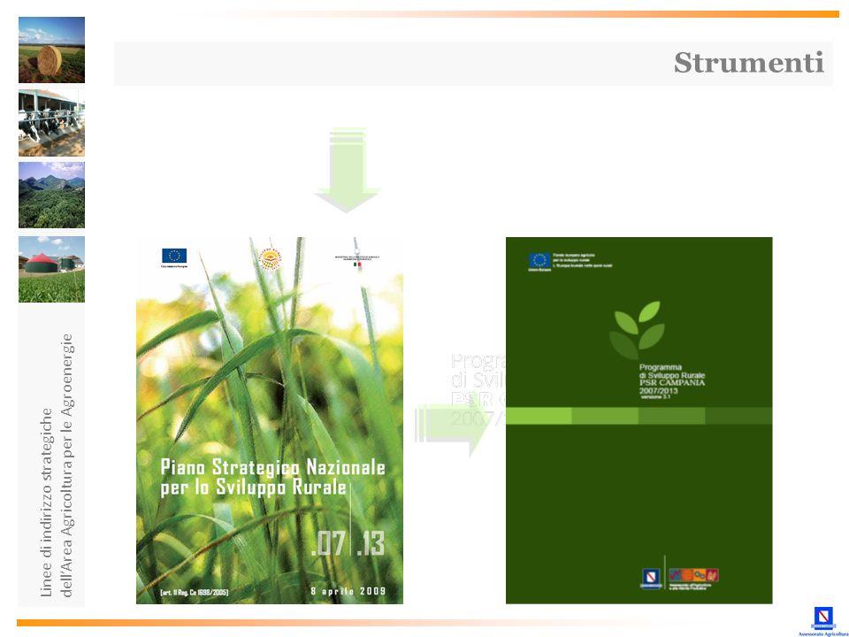 Strumenti dell'Area Agricoltura per le Agroenergie