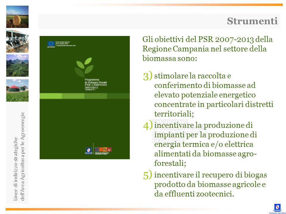Strumenti Gli obiettivi del PSR 2007-2013 della Regione Campania nel settore della biomassa sono: