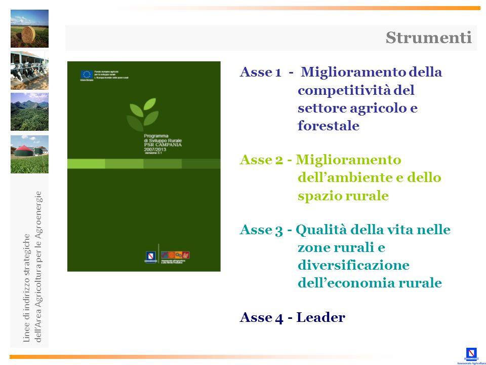 Strumenti Asse 1 - Miglioramento della competitività del settore agricolo e forestale.