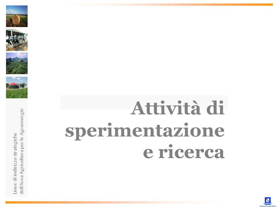 sperimentazione e ricerca