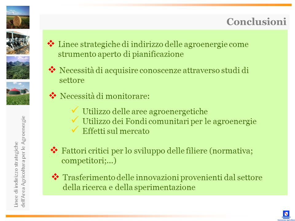 Conclusioni Linee strategiche di indirizzo delle agroenergie come strumento aperto di pianificazione.