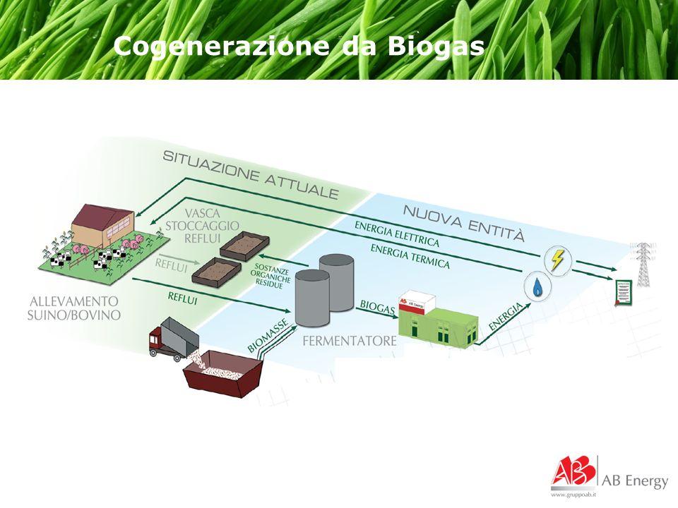 Cogenerazione da Biogas