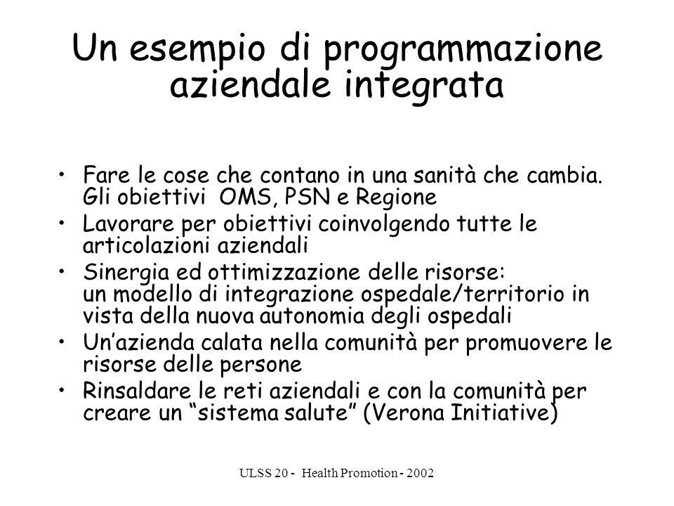 Un esempio di programmazione aziendale integrata