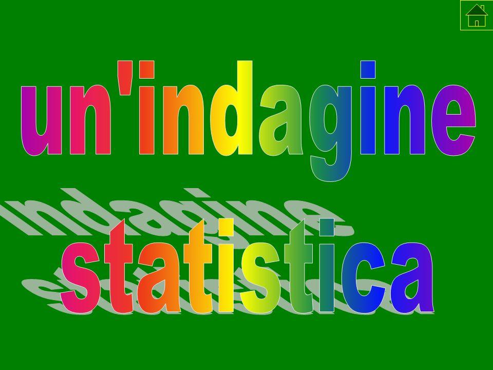 un indagine statistica statistica