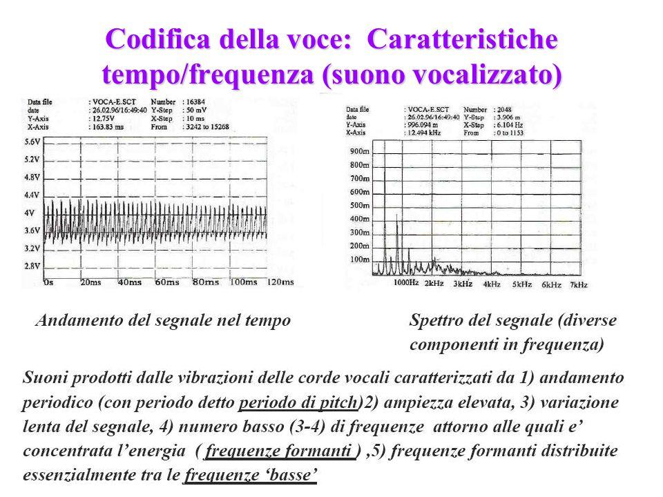 Codifica della voce: Caratteristiche tempo/frequenza (suono vocalizzato)