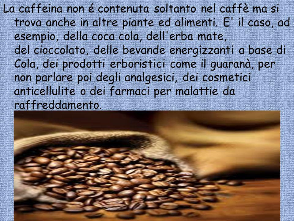 La caffeina non é contenuta soltanto nel caffè ma si trova anche in altre piante ed alimenti.