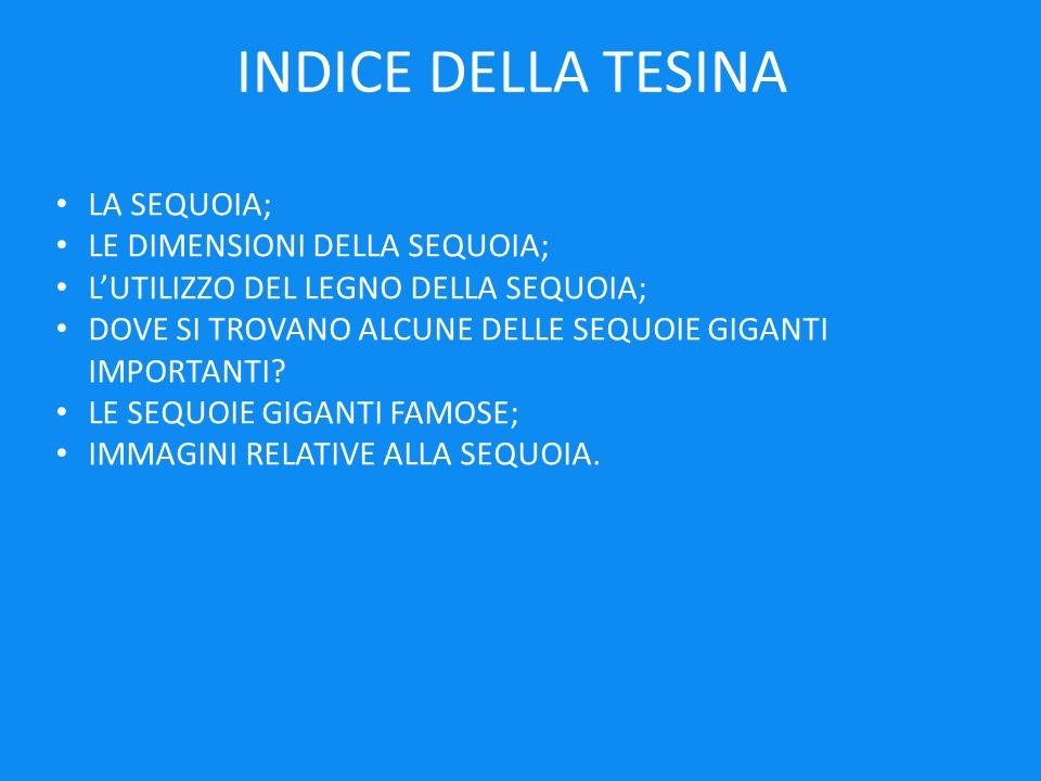 INDICE DELLA TESINA LA SEQUOIA; LE DIMENSIONI DELLA SEQUOIA;
