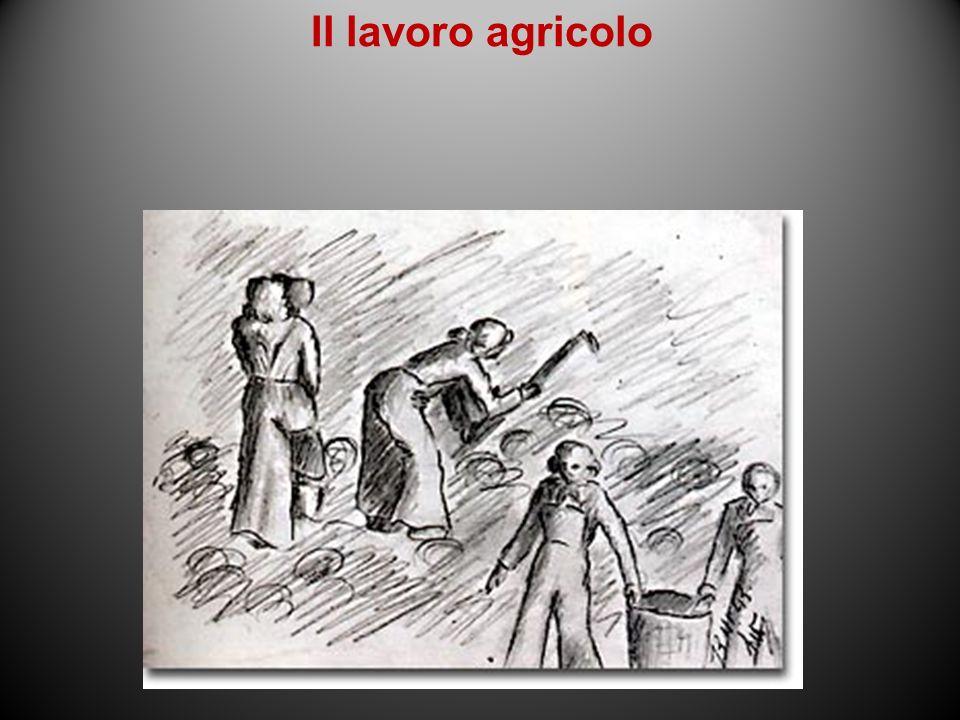 Il lavoro agricolo