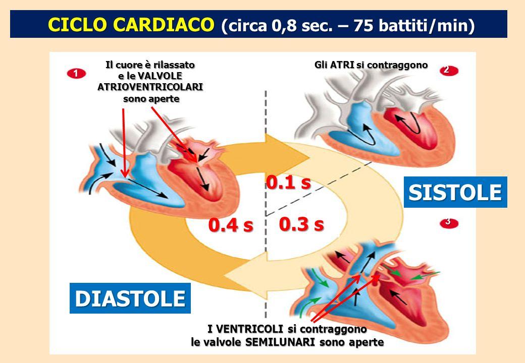 SISTOLE DIASTOLE CICLO CARDIACO (circa 0,8 sec. – 75 battiti/min)