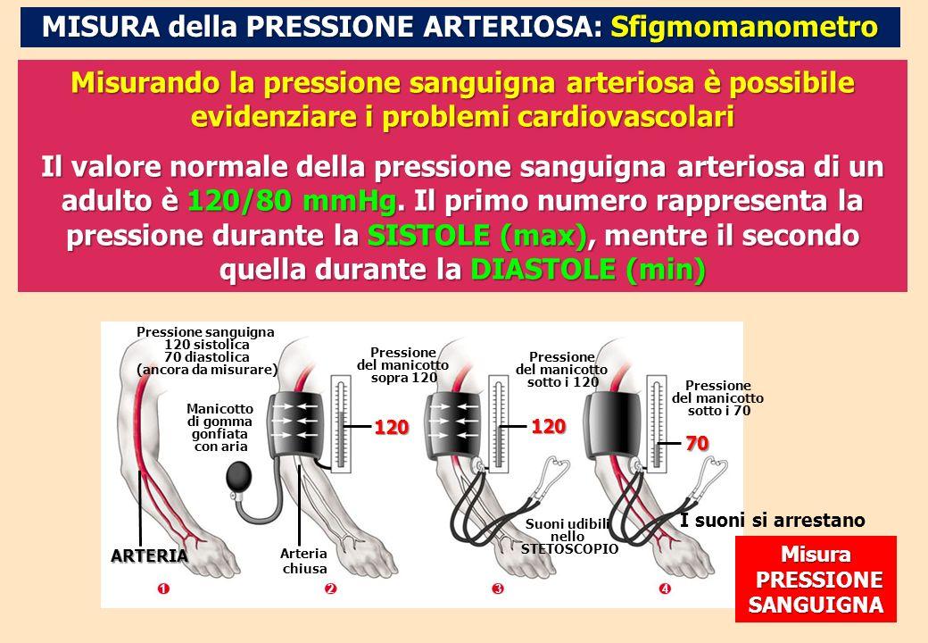 MISURA della PRESSIONE ARTERIOSA: Sfigmomanometro