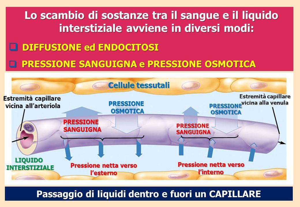 Pressione netta verso l'esterno Pressione netta verso l'interno
