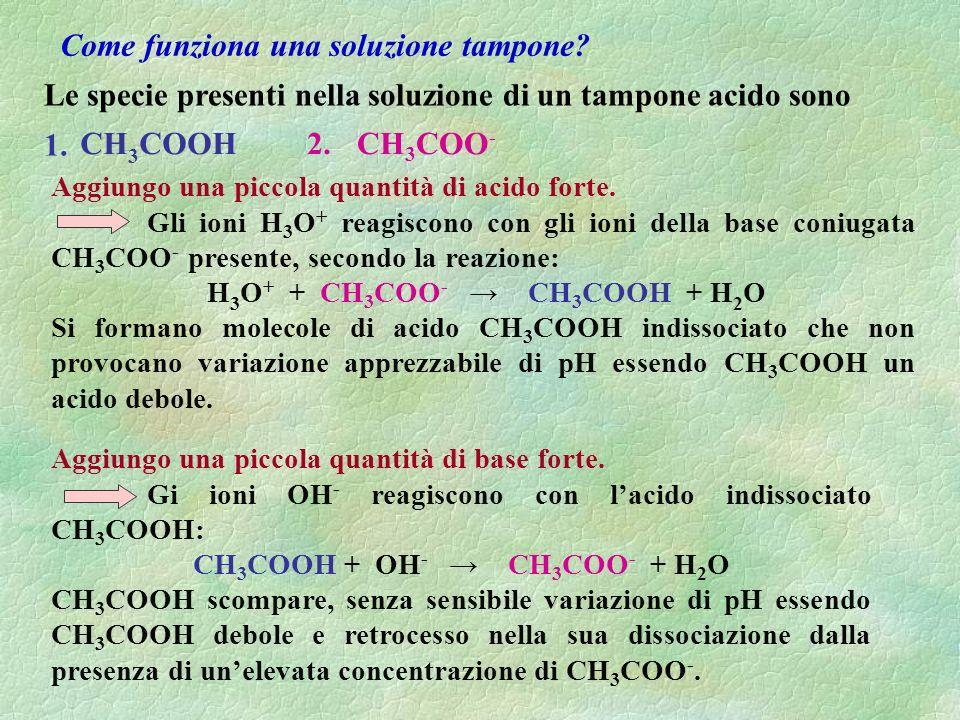 Come funziona una soluzione tampone H3O+ + CH3COO- → CH3COOH + H2O