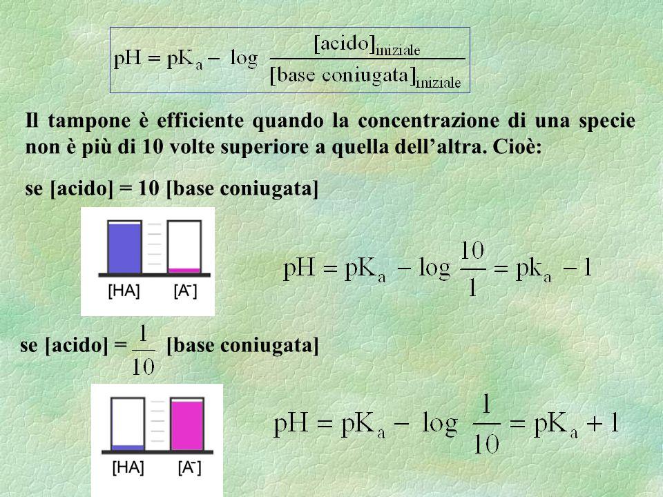 Il tampone è efficiente quando la concentrazione di una specie non è più di 10 volte superiore a quella dell'altra. Cioè: