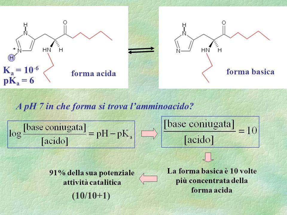 A pH 7 in che forma si trova l'amminoacido