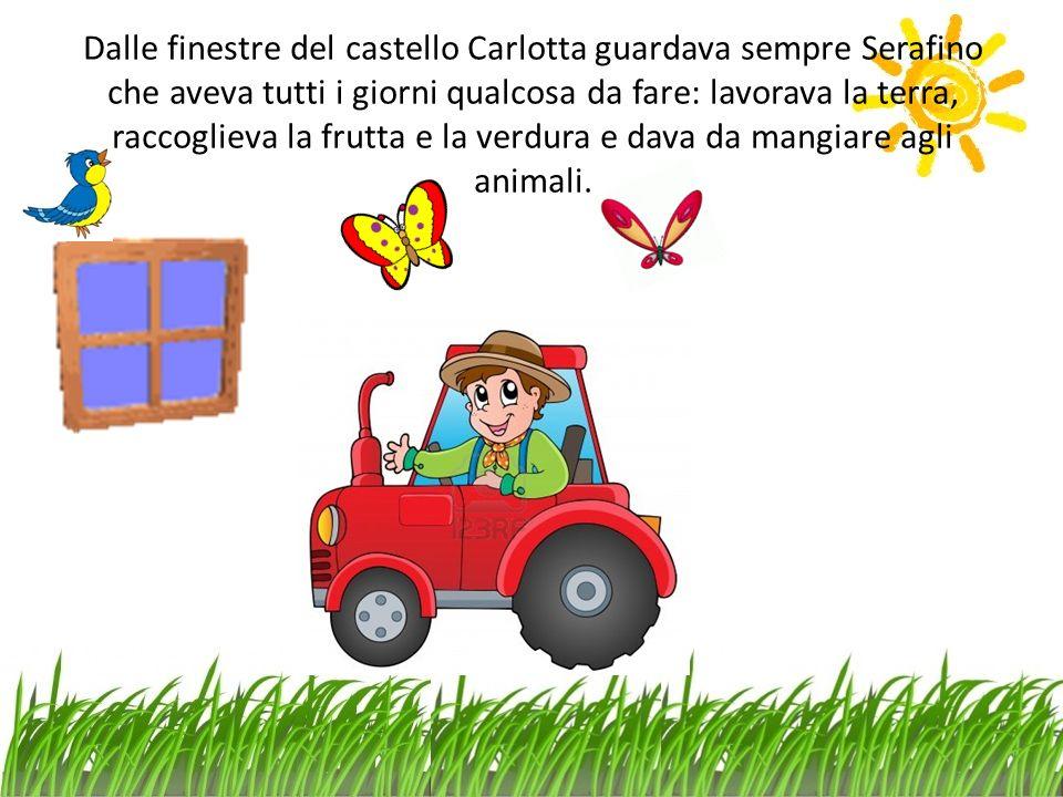 Dalle finestre del castello Carlotta guardava sempre Serafino che aveva tutti i giorni qualcosa da fare: lavorava la terra, raccoglieva la frutta e la verdura e dava da mangiare agli animali.