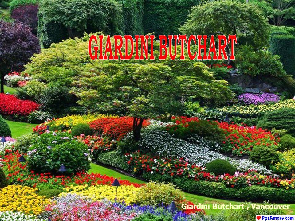 Giardini Butchart , Vancouver