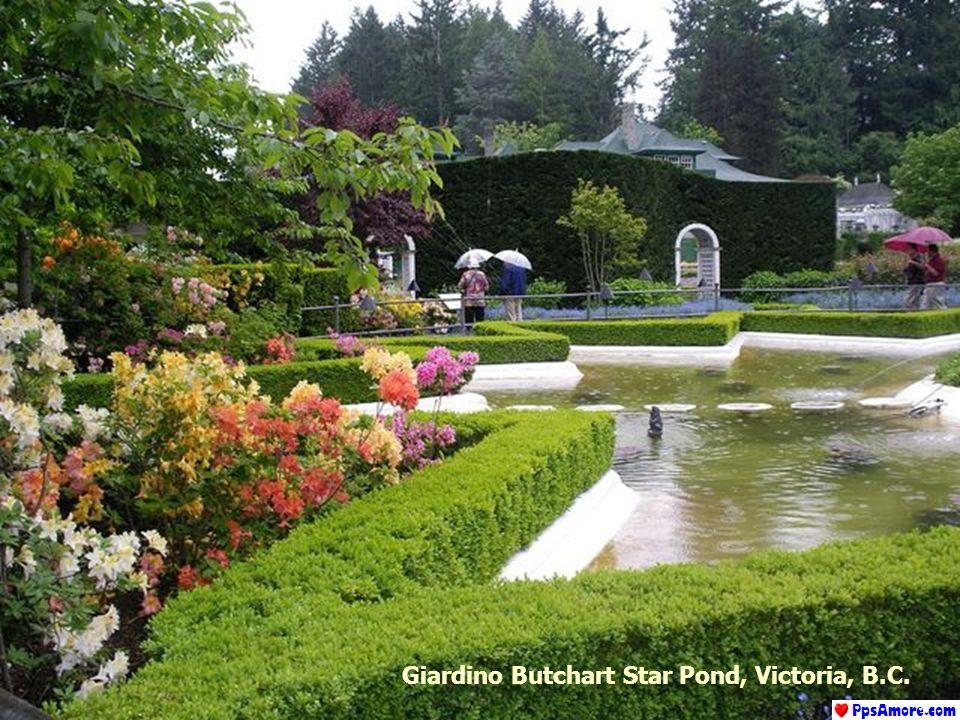 Giardino Butchart Star Pond, Victoria, B.C.