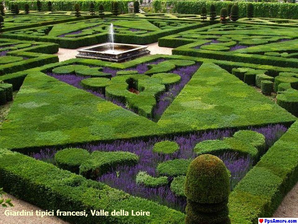 Giardini tipici francesi, Valle della Loire