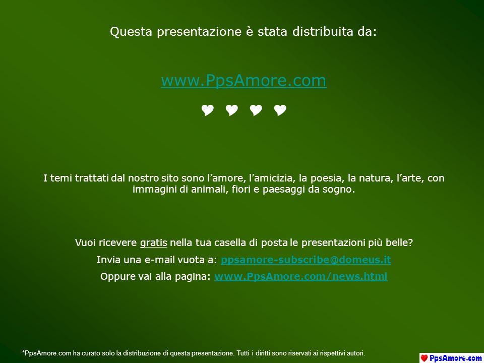 www.PpsAmore.com Y Y Y Y Questa presentazione è stata distribuita da: