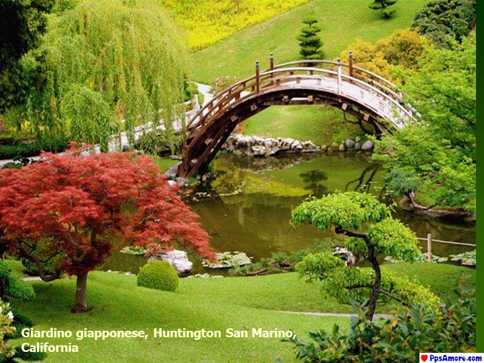 Giardino giapponese, Huntington San Marino, California