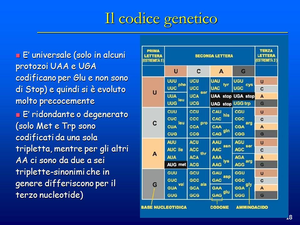 Il codice geneticoE' universale (solo in alcuni protozoi UAA e UGA codificano per Glu e non sono di Stop) e quindi si è evoluto molto precocemente.