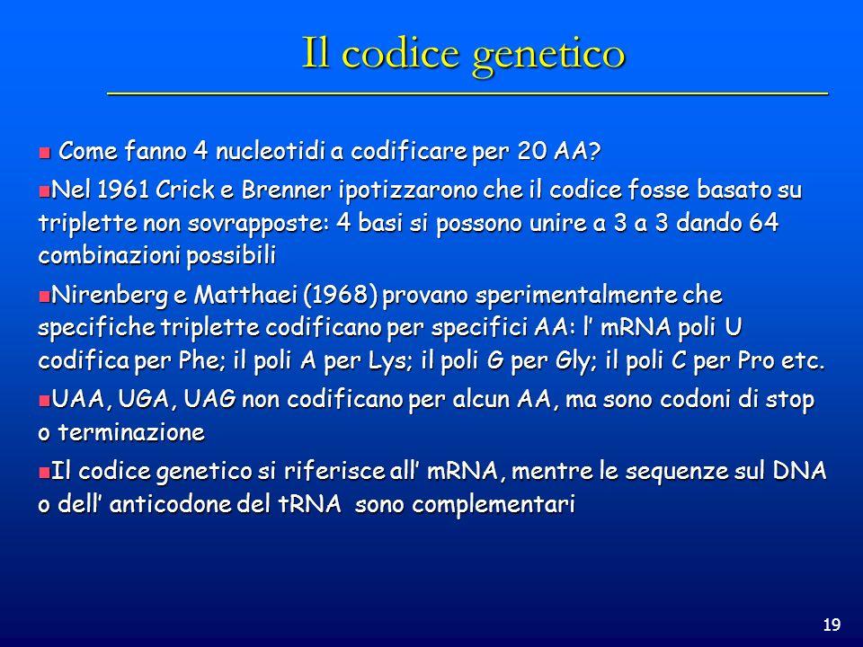 Il codice genetico Come fanno 4 nucleotidi a codificare per 20 AA