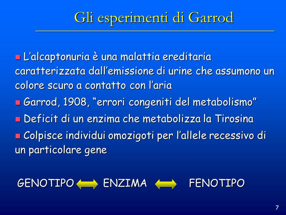 Gli esperimenti di Garrod