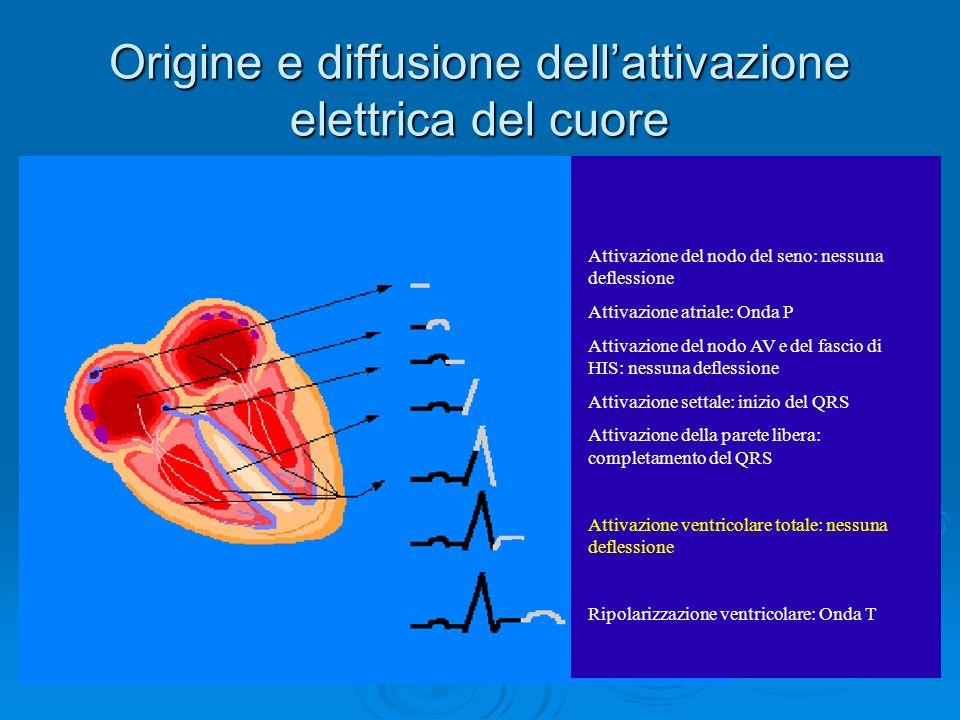Origine e diffusione dell'attivazione elettrica del cuore