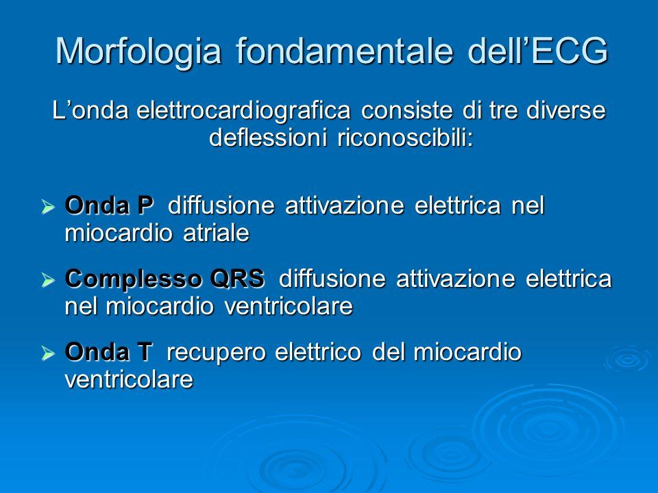Morfologia fondamentale dell'ECG