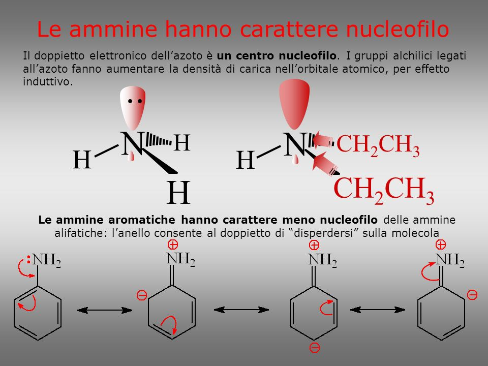 N N CH2CH3 H H Le ammine hanno carattere nucleofilo • • • •