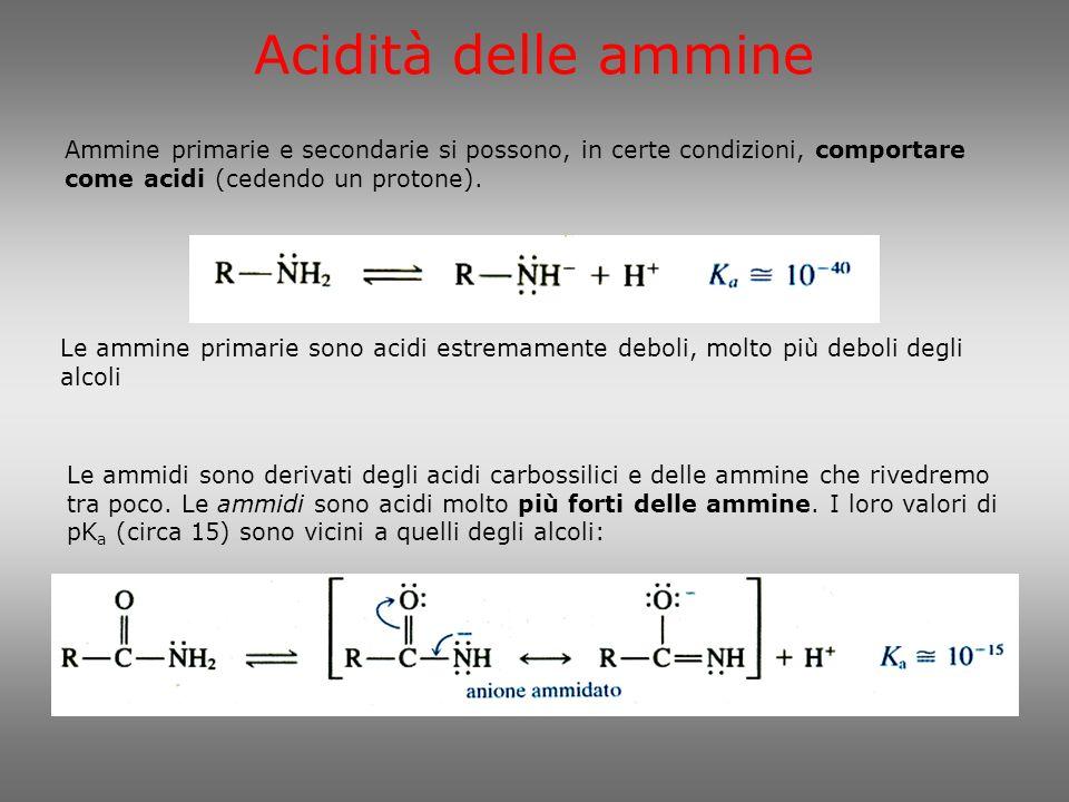 Acidità delle ammine Ammine primarie e secondarie si possono, in certe condizioni, comportare come acidi (cedendo un protone).