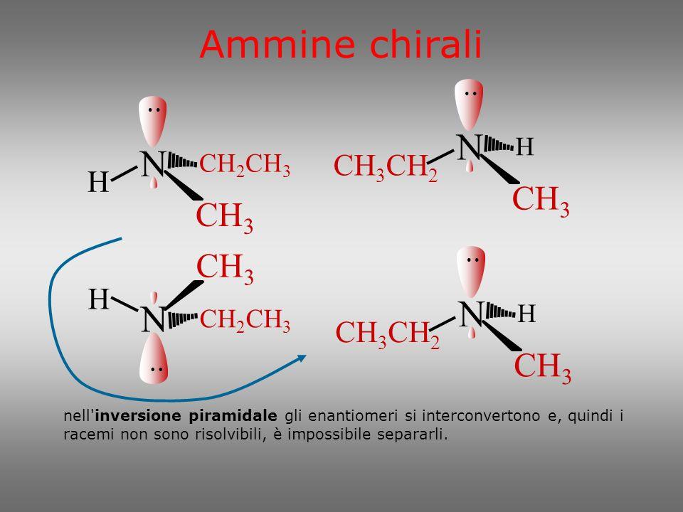 Ammine chirali N N N N CH3 CH3 CH3 CH3 CH3CH2 H H CH3CH2 H CH2CH3 H