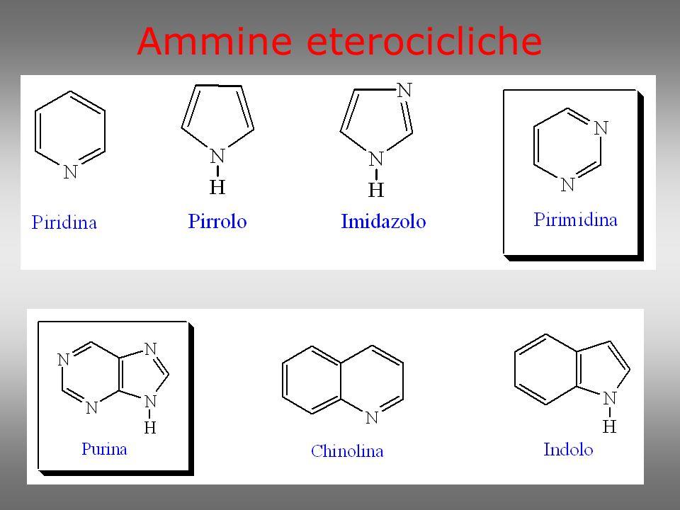 Ammine eterocicliche