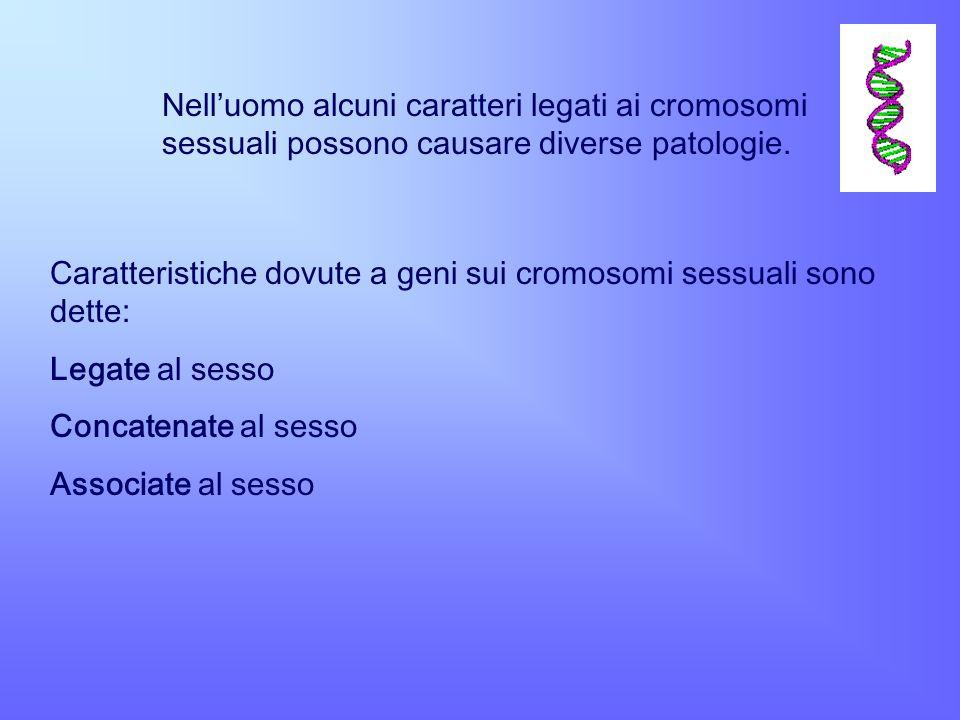 Nell'uomo alcuni caratteri legati ai cromosomi sessuali possono causare diverse patologie.