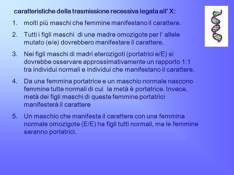 caratteristiche della trasmissione recessiva legata all' X: