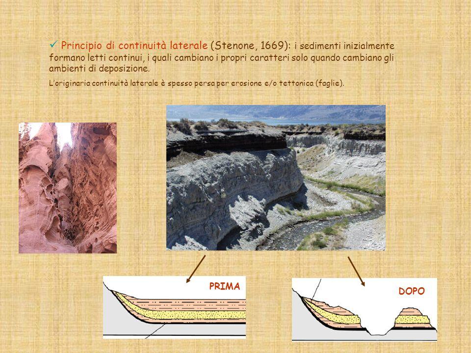 Principio di continuità laterale (Stenone, 1669): i sedimenti inizialmente formano letti continui, i quali cambiano i propri caratteri solo quando cambiano gli ambienti di deposizione.