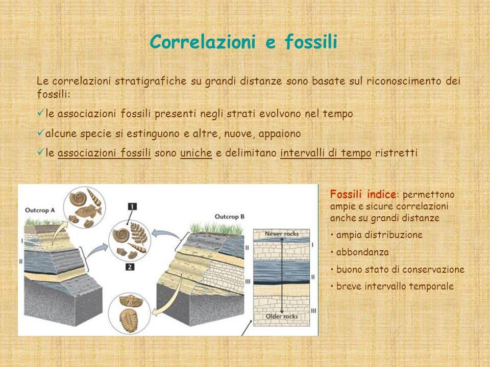 Correlazioni e fossili