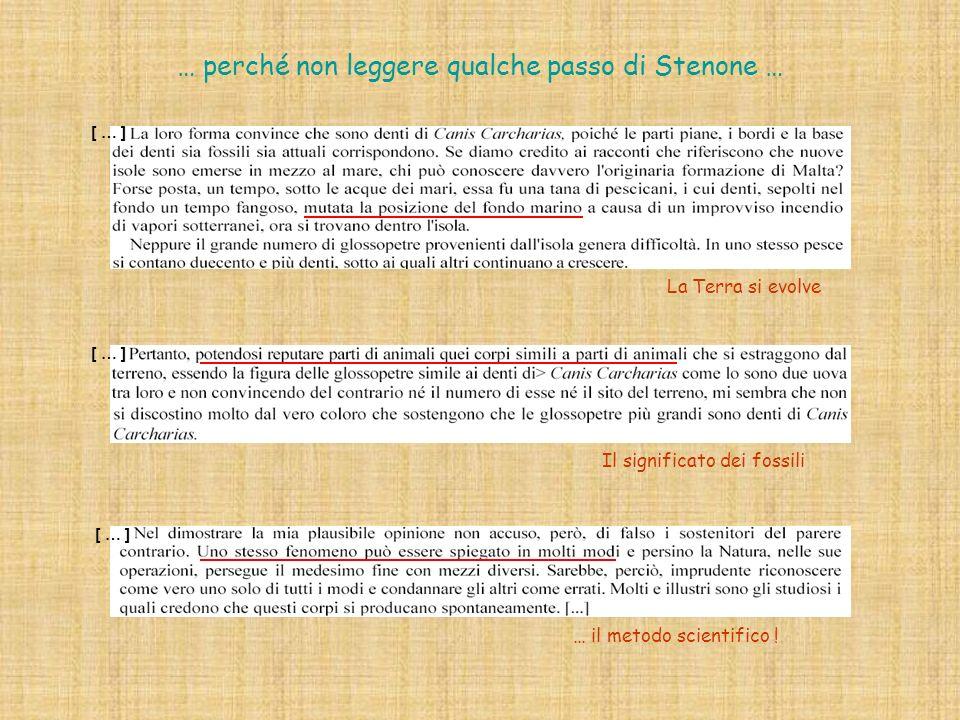 … perché non leggere qualche passo di Stenone …