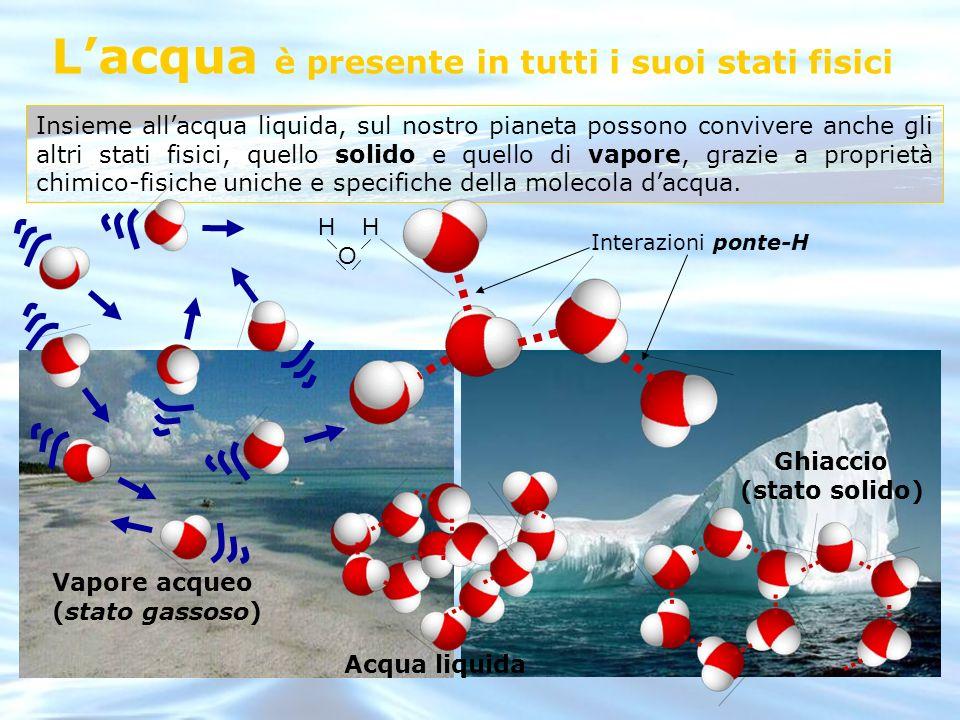 L'acqua è presente in tutti i suoi stati fisici