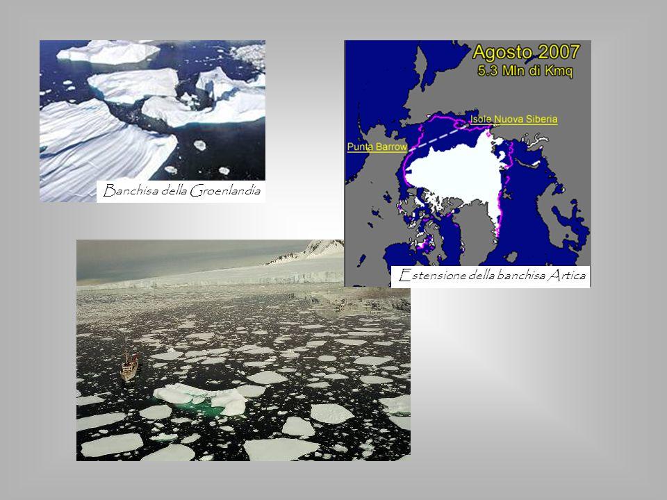 Banchisa della Groenlandia