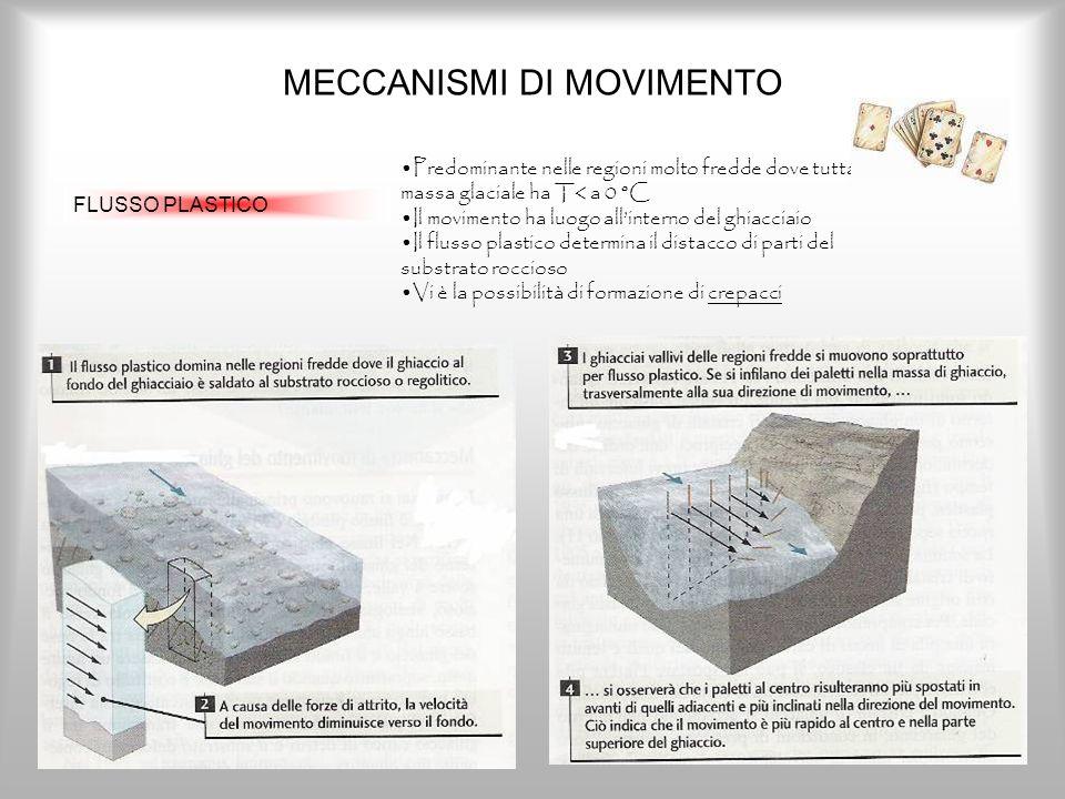 MECCANISMI DI MOVIMENTO