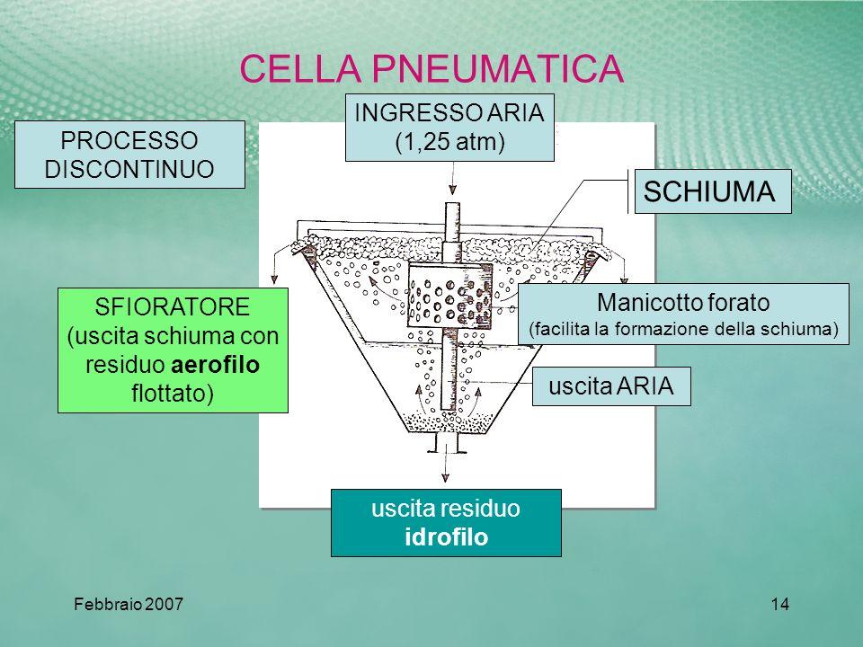 CELLA PNEUMATICA SCHIUMA INGRESSO ARIA (1,25 atm) PROCESSO DISCONTINUO