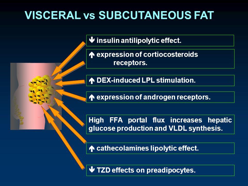 VISCERAL vs SUBCUTANEOUS FAT