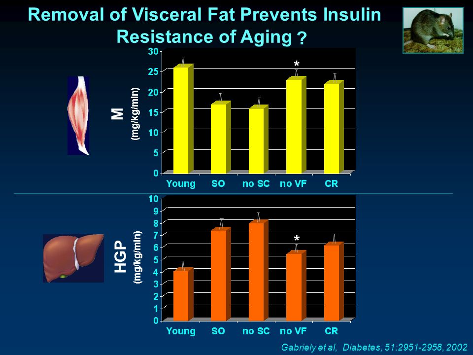 Removal of Visceral Fat Prevents Insulin Resistance of Aging