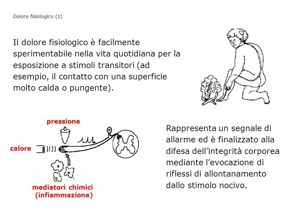 Dolore fisiologico (1)