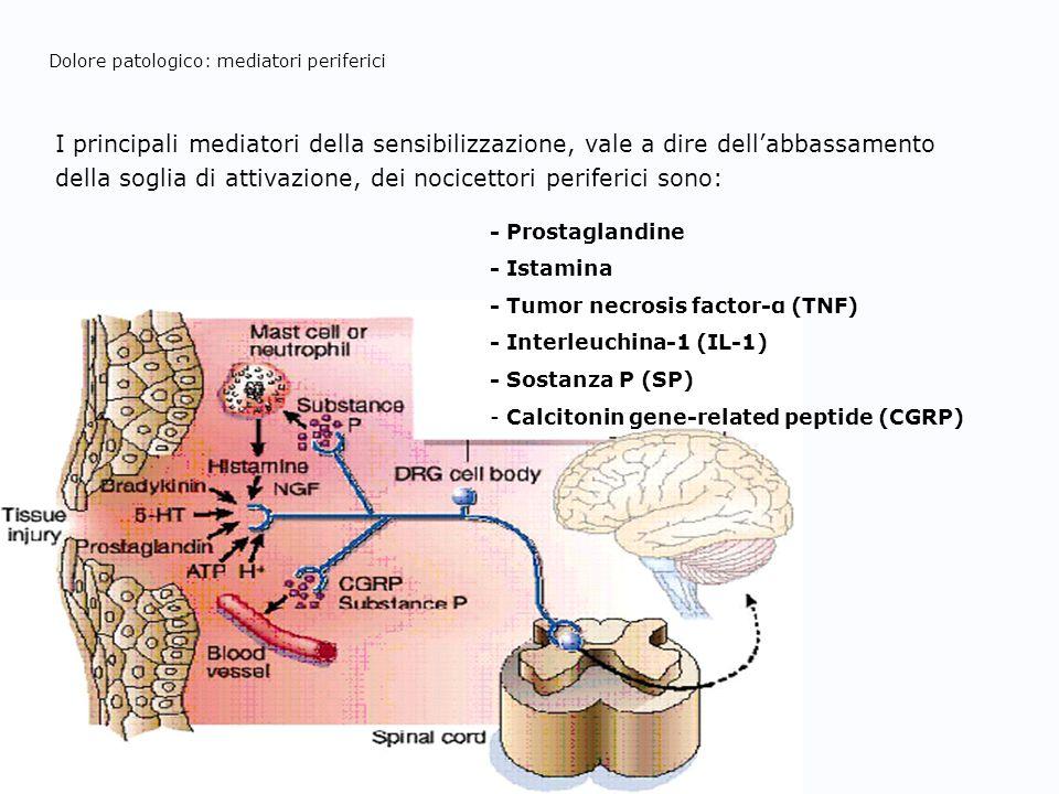 Dolore patologico: mediatori periferici