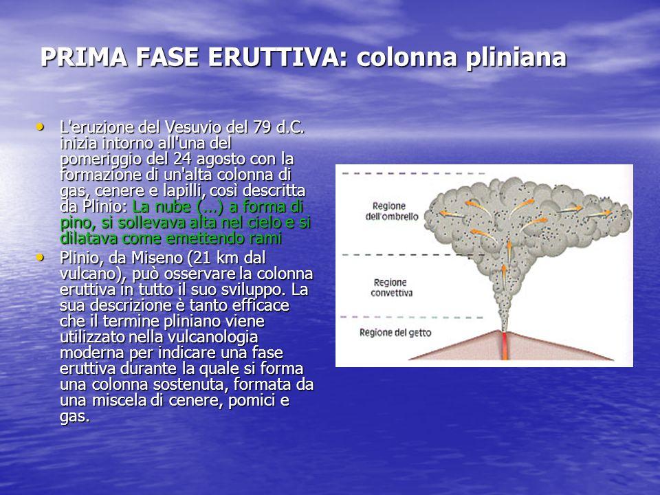 PRIMA FASE ERUTTIVA: colonna pliniana