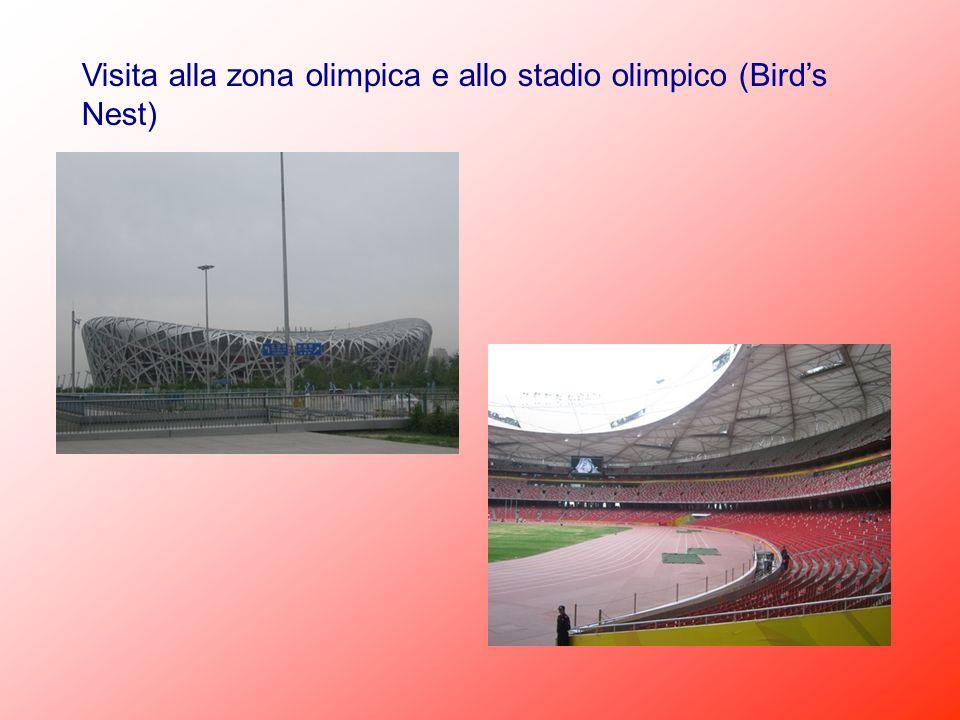 Visita alla zona olimpica e allo stadio olimpico (Bird's Nest)