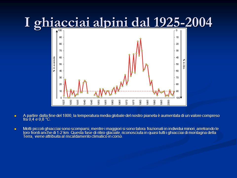 I ghiacciai alpini dal 1925-2004