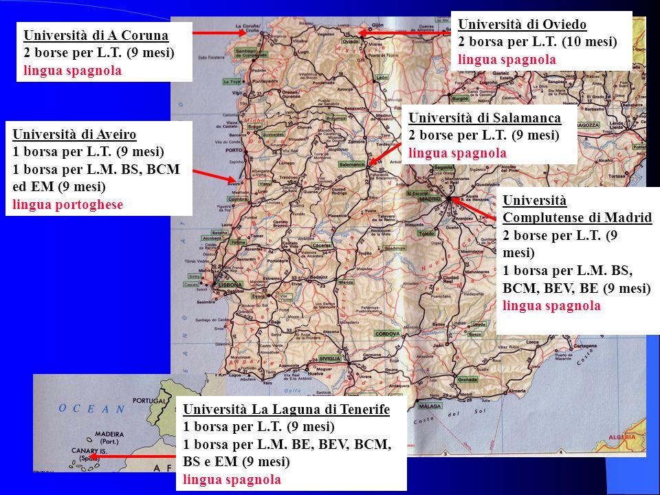 Università di Oviedo 2 borsa per L.T. (10 mesi) lingua spagnola